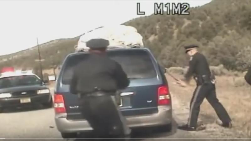 Cops Gone Wild: Domestic Terrorist Edition